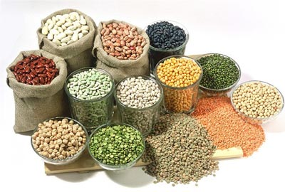 Export process foods and agriculture products