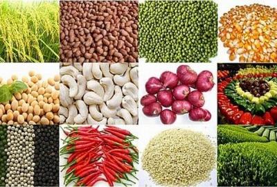 5 tháng năm 2017, giá trị xuất khẩu các mặt hàng nông sản chính ước đạt 7,3 tỷ USD
